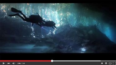 Screenshot: This is why we dive Cenotes!